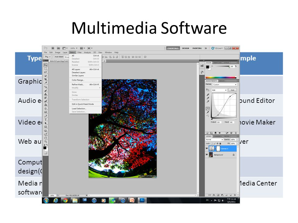 Type of multimedia software Type of multimedia files that create and manage Example Graphics softwareImagesPhotoshop Audio editing softwareAudio filesWavePad Sound Editor Video editing softwareVideo clipsWindows movie Maker Web authoring softwareWeb sitesDreamweaver Computer-aided design(CAD) software computer-aided designs and drafting NX Media management software Sound files,video,images etc.Windows Media Center Multimedia Software