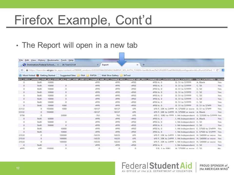 Firefox Example, Cont'd The Report will open in a new tab 12