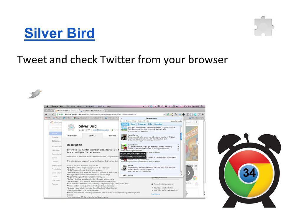Silver Bird Tweet and check Twitter from your browser 34