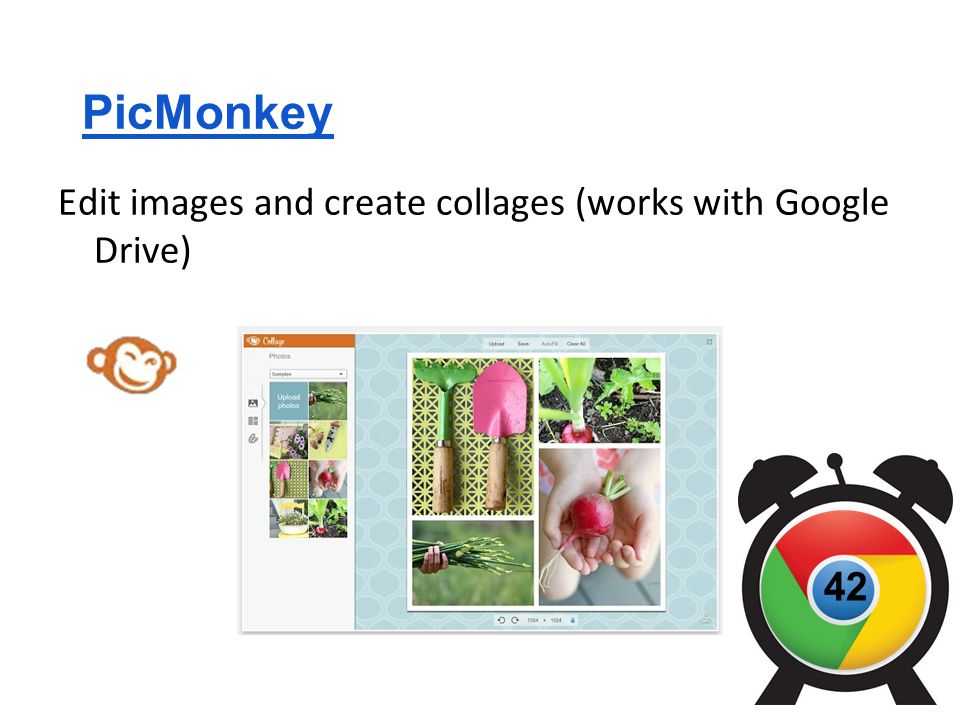 PicMonkey Edit images and create collages (works with Google Drive) 42