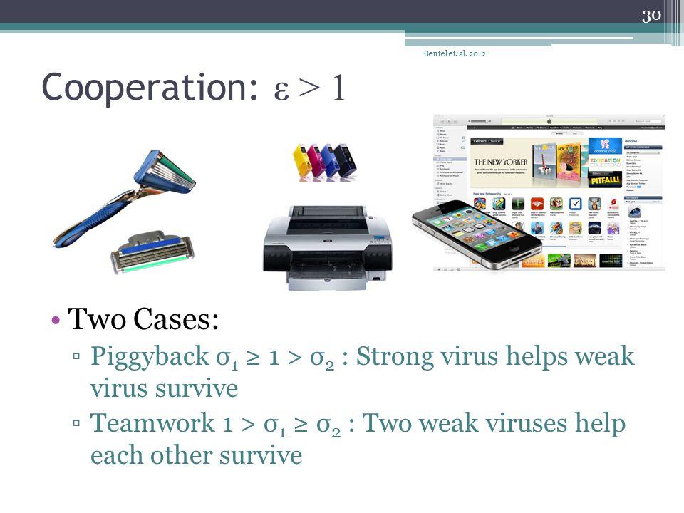 Cooperation: ε > 1 Two Cases: ▫Piggyback σ 1 ≥ 1 > σ 2 : Strong virus helps weak virus survive ▫Teamwork 1 > σ 1 ≥ σ 2 : Two weak viruses help each ot