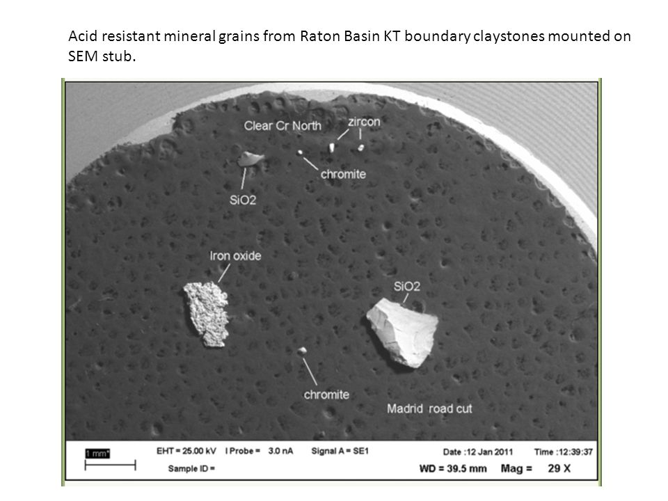 Acid resistant mineral grains from Raton Basin KT boundary claystones mounted on SEM stub.