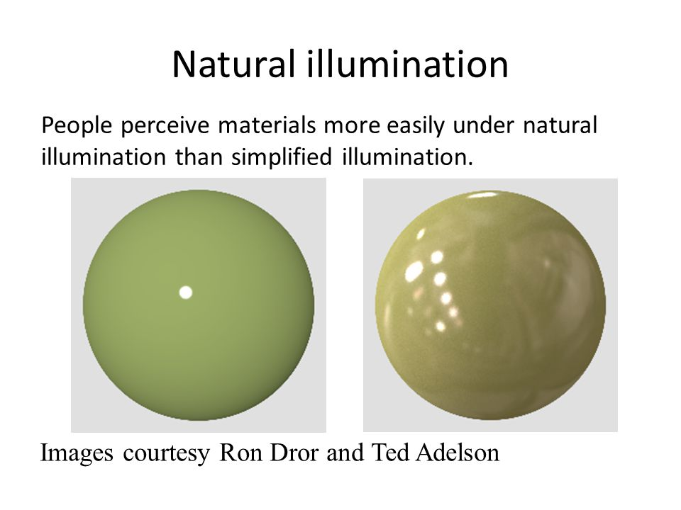 Natural illumination People perceive materials more easily under natural illumination than simplified illumination. Images courtesy Ron Dror and Ted A