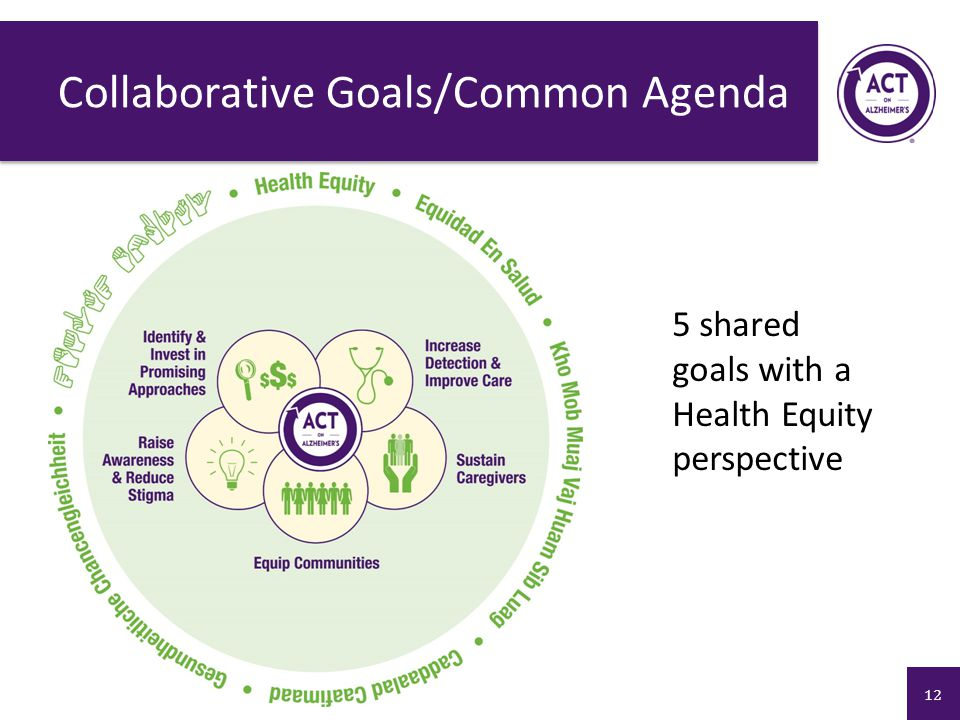 Collaborative Goals/Common Agenda 5 shared goals with a Health Equity perspective 12