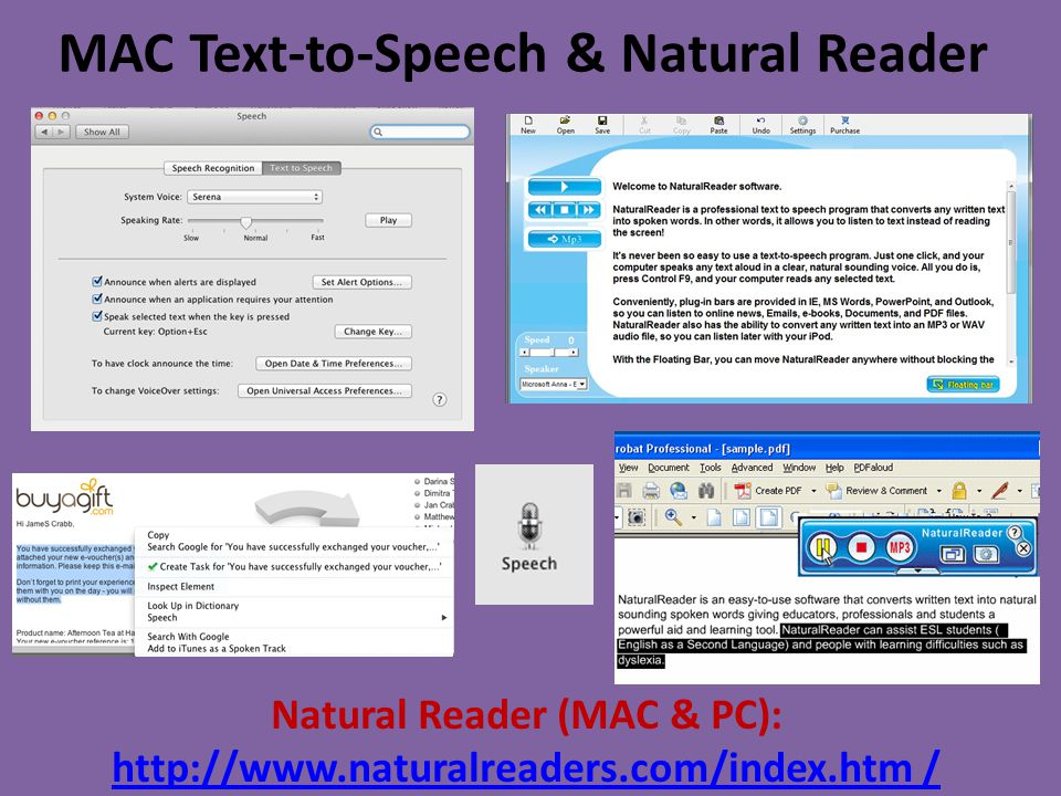 Accessible Scanning Software: OCR What is Optical Character Recognition, or OCR.
