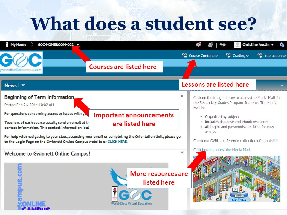 What does a student see.