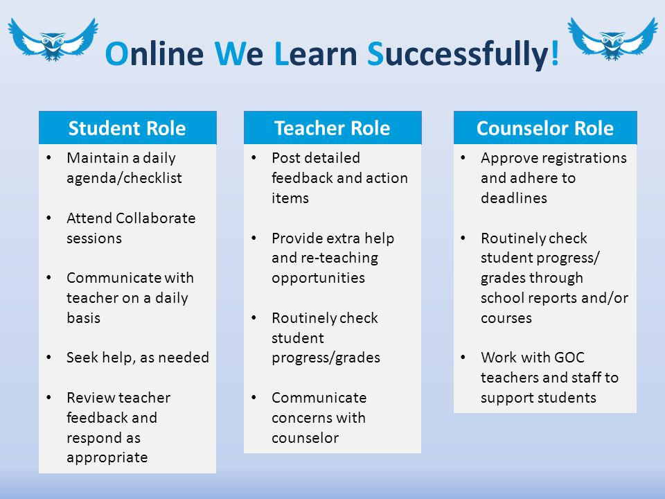 Online We Learn Successfully.
