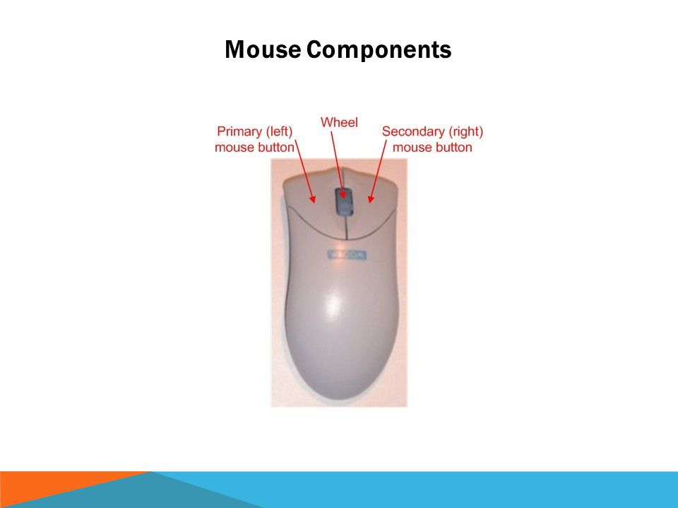 Mouse Components