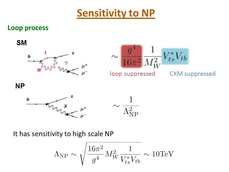 NPへの感度 SM NP loop suppressedCKM suppressed Loop process Sensitivity to NP It has sensitivity to high scale NP