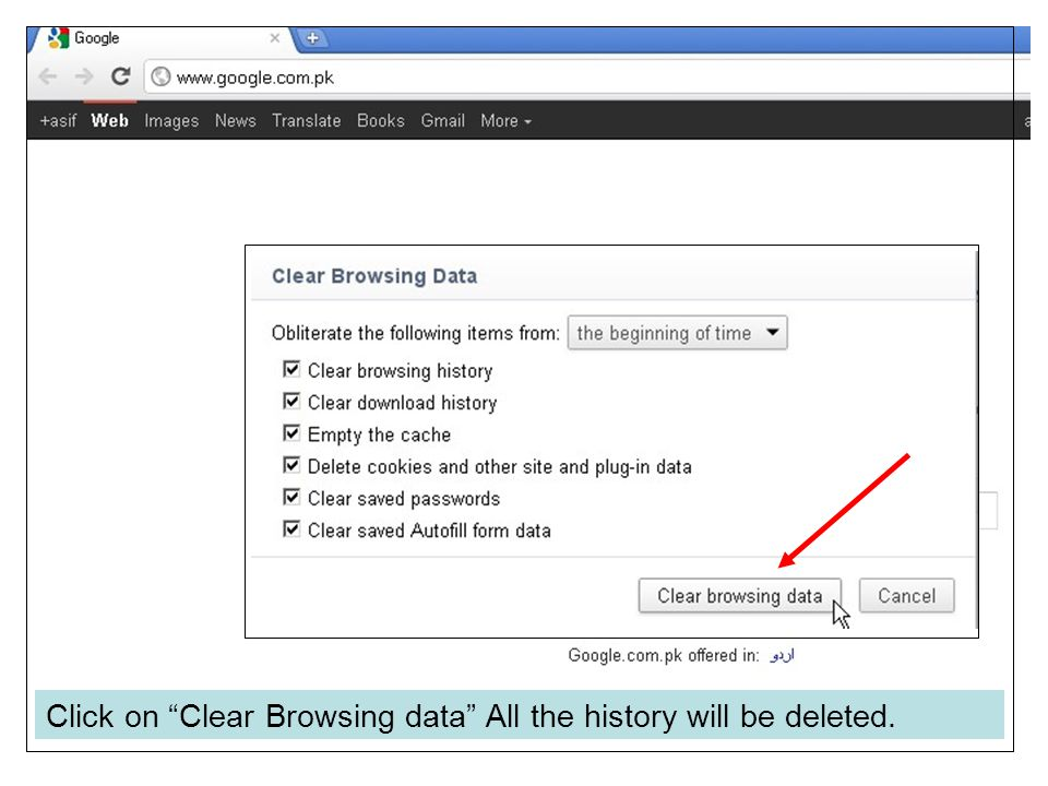 "Click on ""Clear Browsing data"" All the history will be deleted."