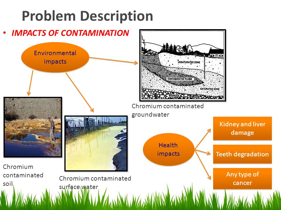 Problem Description IMPACTS OF CONTAMINATION Environmental impacts Chromium contaminated soil Chromium contaminated surface water Chromium contaminate