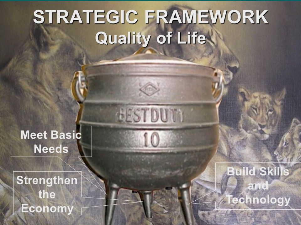 STRATEGIC FRAMEWORK Quality of Life Meet Basic Needs Strengthen the Economy Build Skills and Technology
