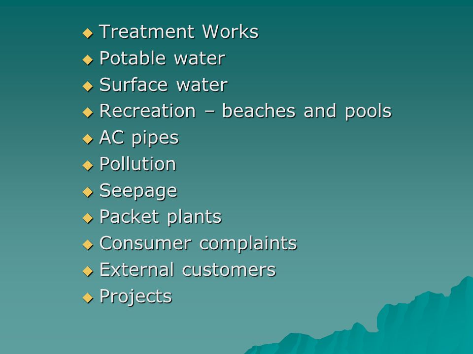  Treatment Works  Potable water  Surface water  Recreation – beaches and pools  AC pipes  Pollution  Seepage  Packet plants  Consumer complaints  External customers  Projects
