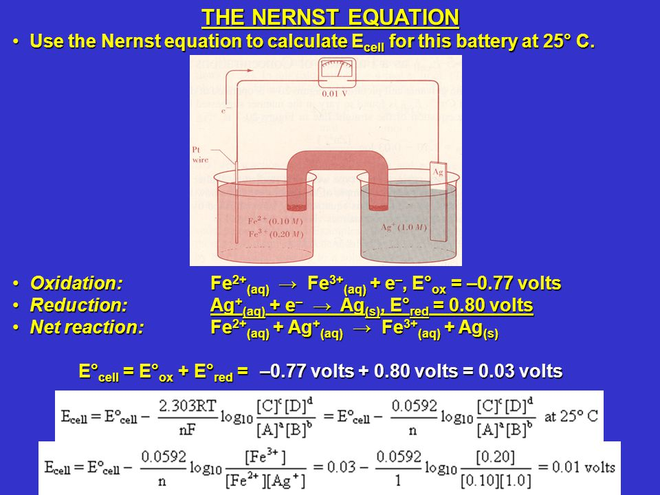 Use the Nernst equation to calculate E cell for this battery at 25° C.Use the Nernst equation to calculate E cell for this battery at 25° C. Oxidation