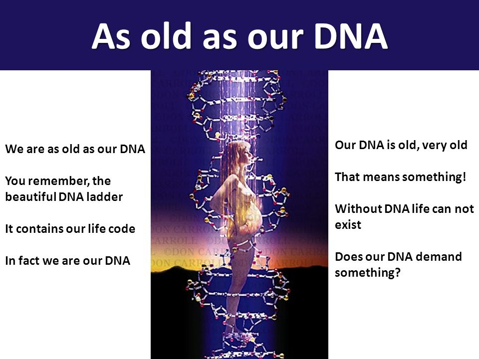 We are as old as our DNA You remember, the beautiful DNA ladder It contains our life code In fact we are our DNA Our DNA is old, very old That means s