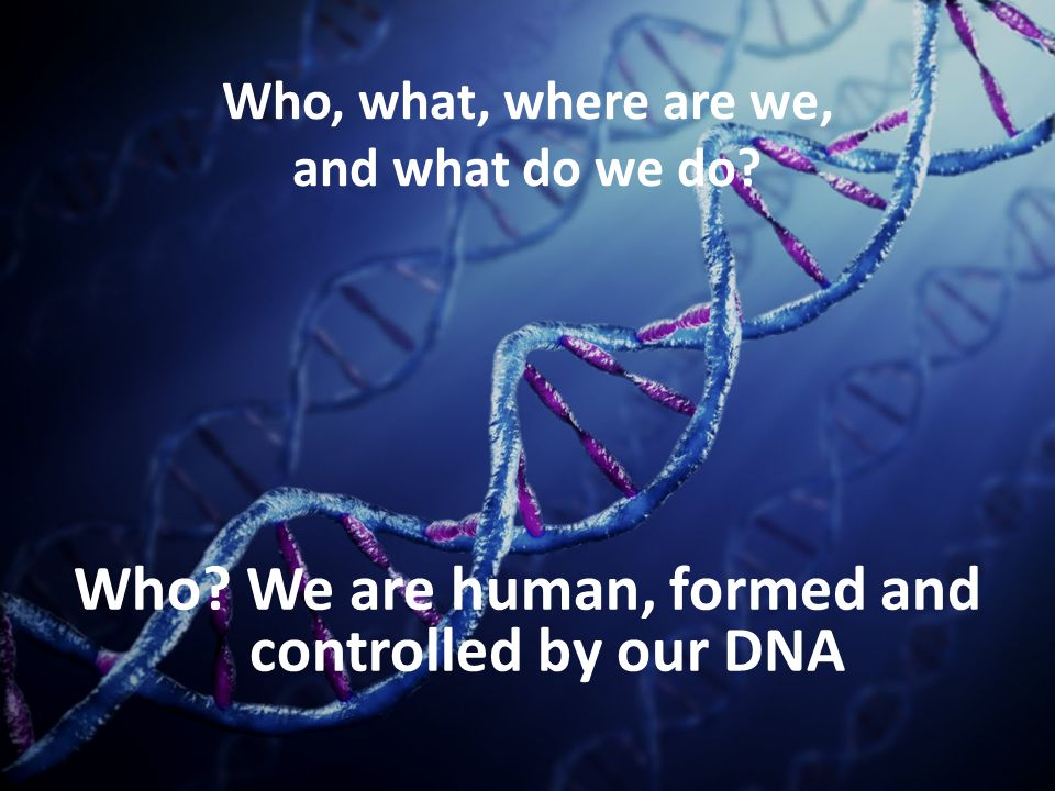 Who, what, where are we, and what do we do? Who? We are human, formed and controlled by our DNA