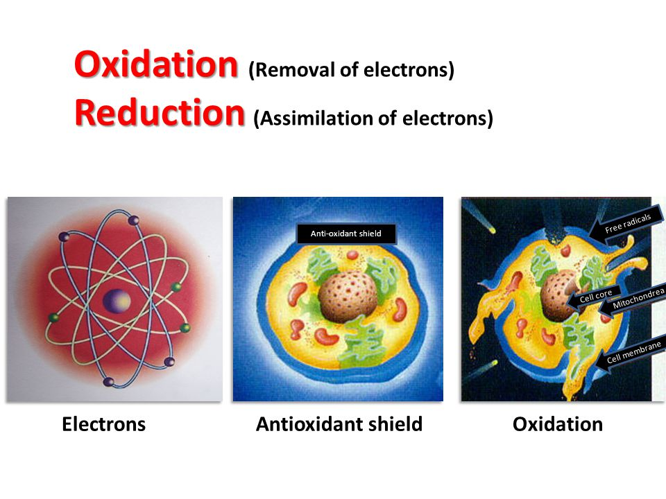 Oxidation Reduction Oxidation (Removal of electrons) Reduction (Assimilation of electrons) Electrons Antioxidant shield Oxidation Free radicals Cell c