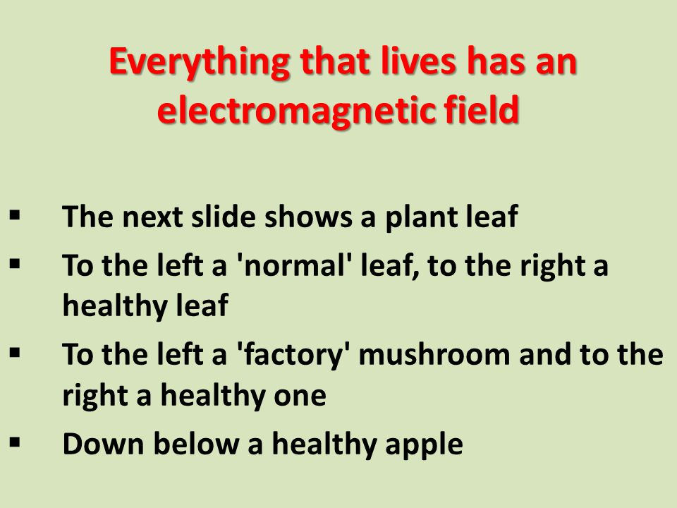 Everything that lives has an electromagnetic field Everything that lives has an electromagnetic field  The next slide shows a plant leaf  To the lef