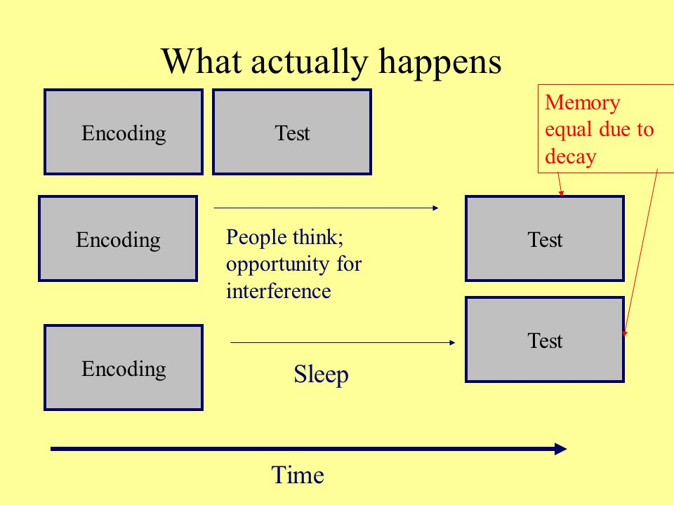 What actually happens EncodingTest EncodingTest Time People think; opportunity for interference Test Sleep Encoding Memory equal due to decay