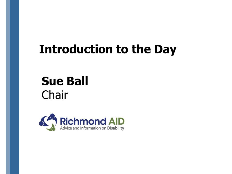 Introduction to the Day Sue Ball Chair