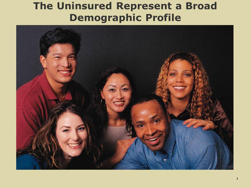 44 The Uninsured Represent a Broad Demographic Profile 4