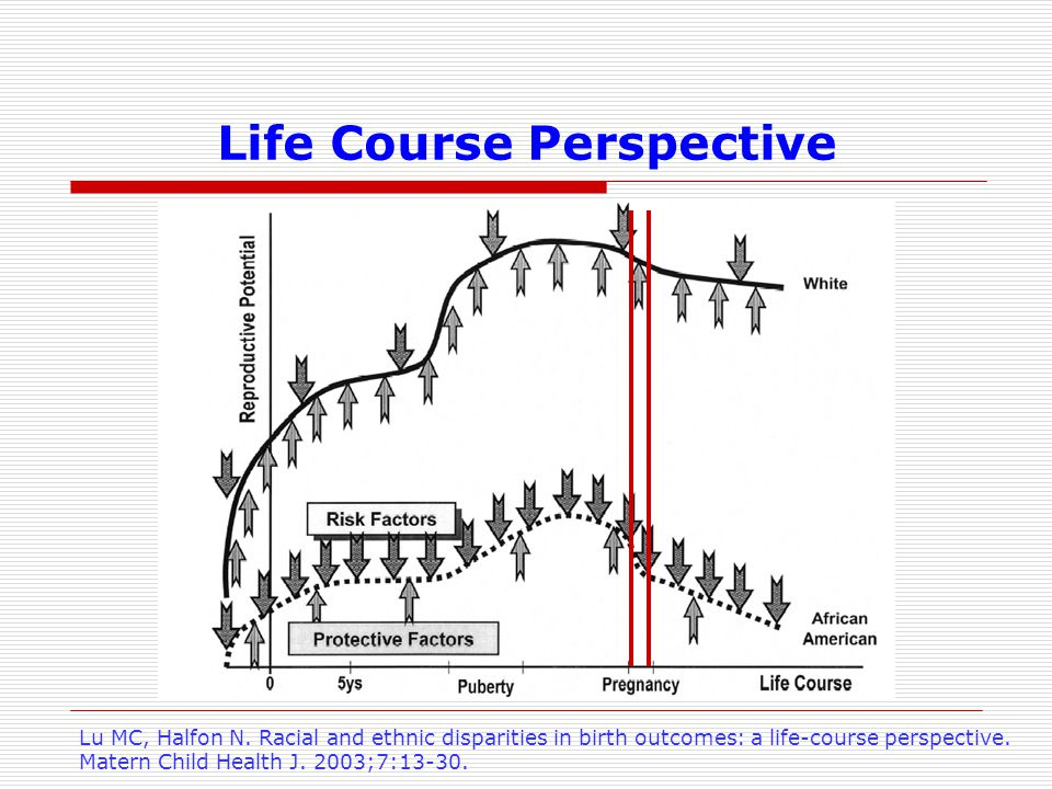 Life Course Perspective Lu MC, Halfon N.