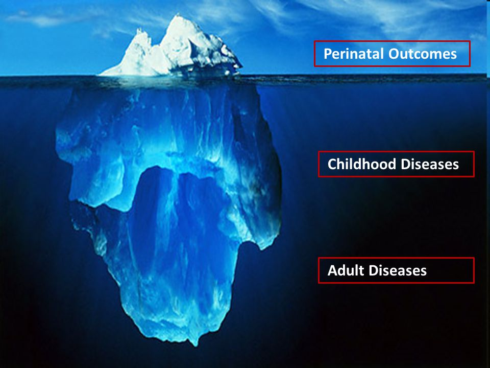 Perinatal Outcomes Childhood Diseases Adult Diseases