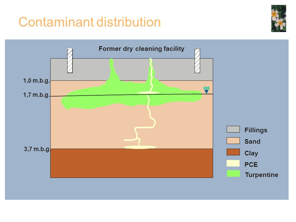 Contaminant distribution Former dry cleaning facility 1,0 m.b.g.
