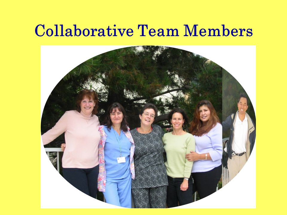 Collaborative Team Members