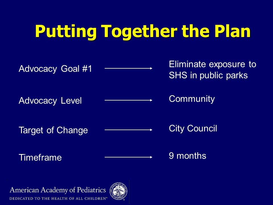 Putting Together the Plan Advocacy Goal #1 Advocacy Level Target of Change Timeframe Eliminate exposure to SHS in public parks Community City Council 9 months