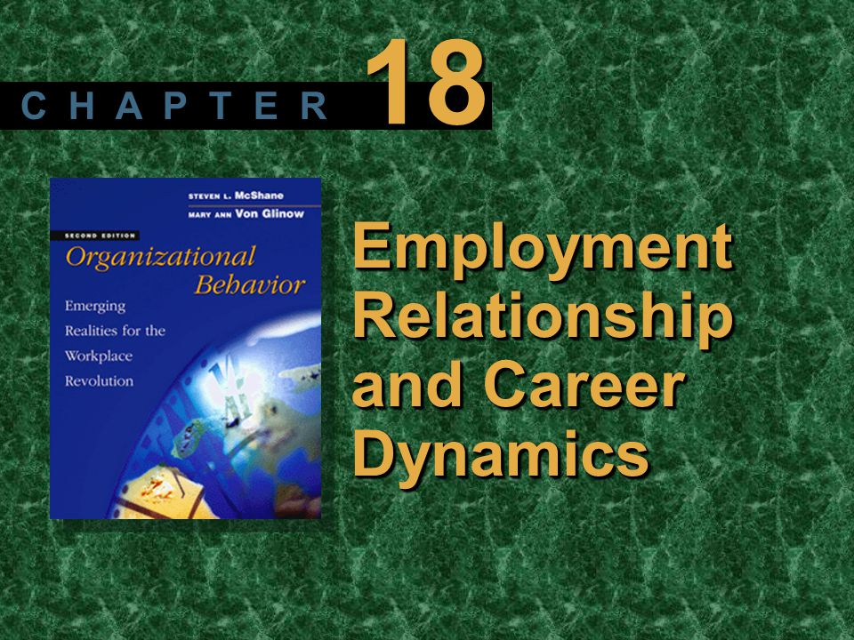 Copyright © 2003 by The McGraw-Hill Companies, Inc. All rights reserved. McShane/ Von Glinow 2/e Employment Relationship and Career Dynamics C H A P T
