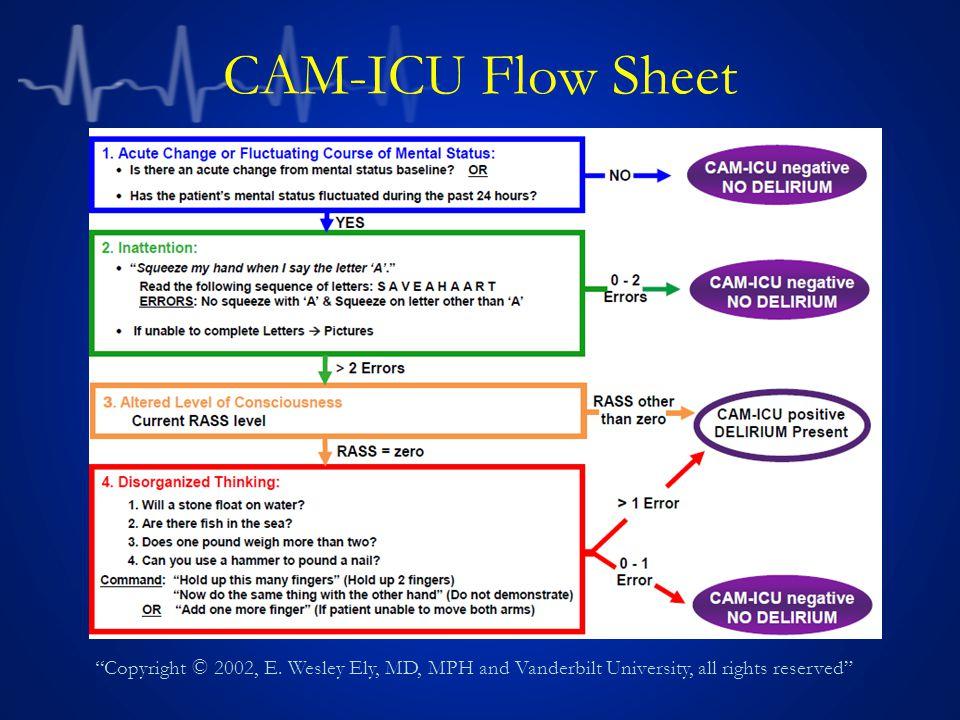 CAM-ICU Flow Sheet Copyright © 2002, E.