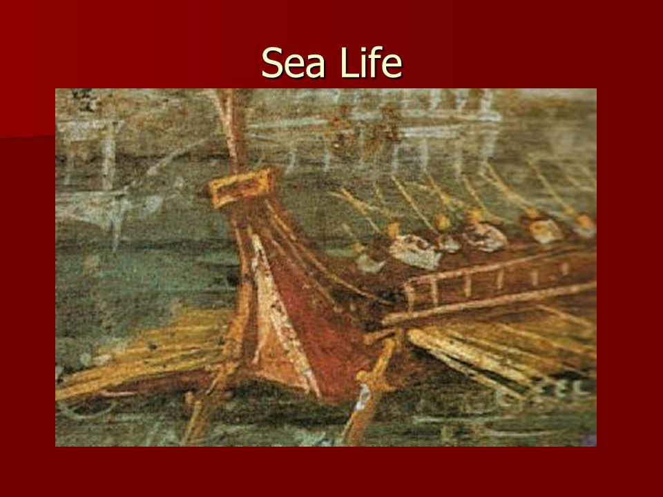 The above picture shows a reconstruction of what this ship must have looked like.