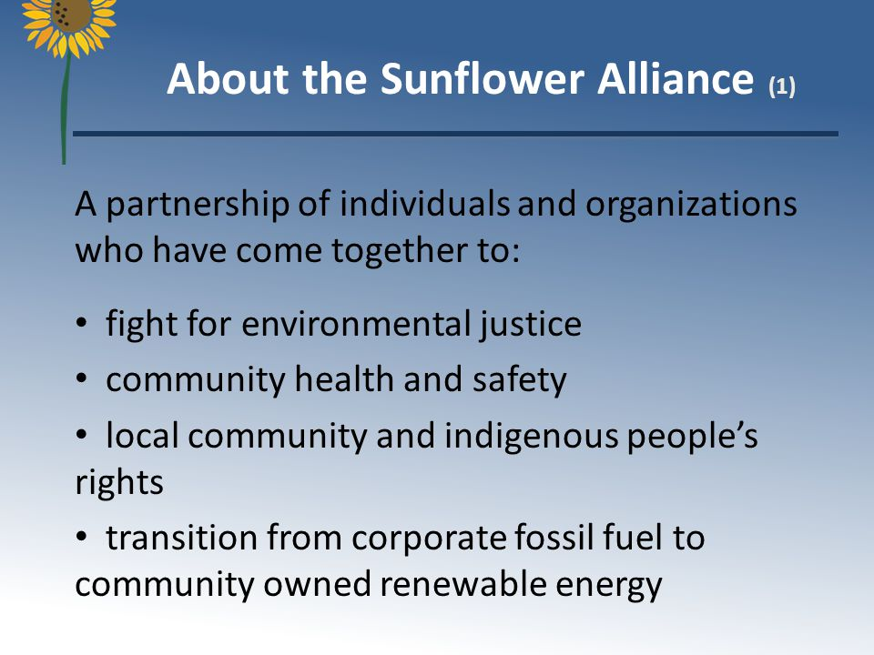 Upcoming Events Actions Media coverage on climate issue Resources for activists Volunteer Opportunities Sunflower-Alliance.org Our New Website