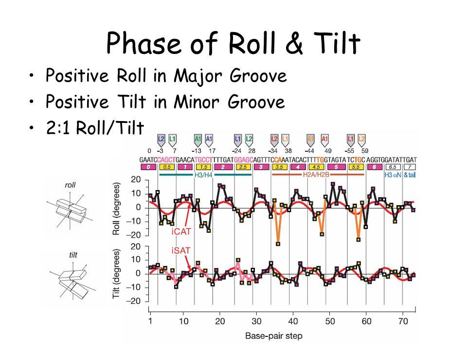 Phase of Roll & Tilt Positive Roll in Major Groove Positive Tilt in Minor Groove 2:1 Roll/Tilt