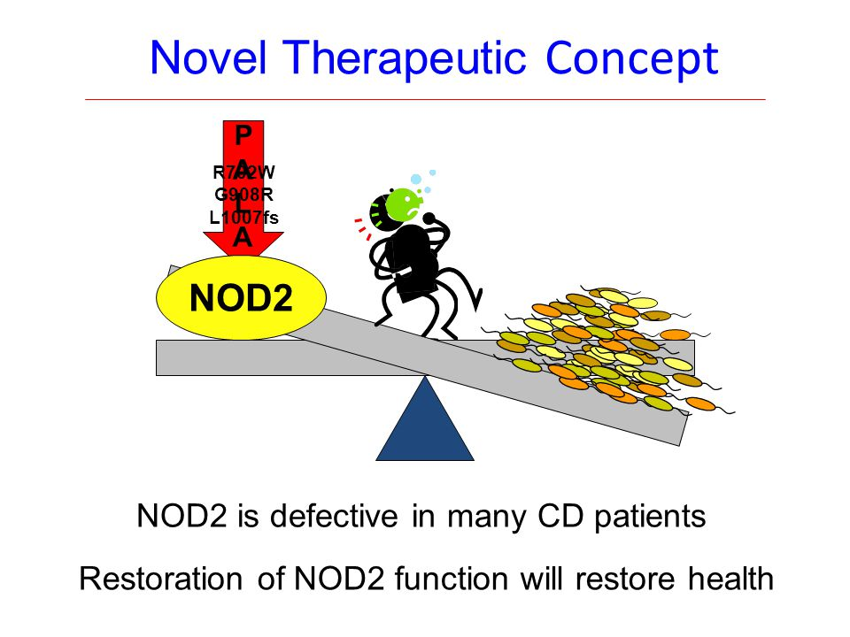 PALAPALA Novel Therapeutic Concept NOD2 is defective in many CD patients Restoration of NOD2 function will restore health R702W G908R L1007fs NOD2