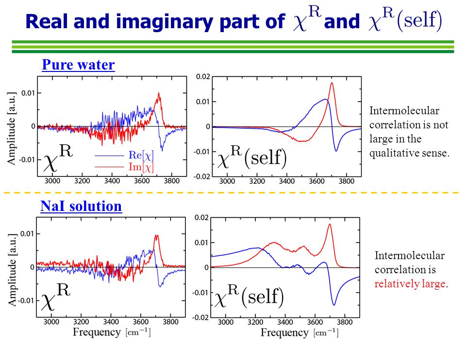 Intermolecular correlation of water and ion water(pol.)-water(dipole) water(pol.)-ion(dipole) ion(pol.)-water(dipole) ion(pol.)-ion(dipole) Water-Ion correlation ( ) is not negligible.