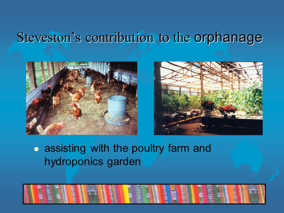Steveston's contribution to the orphanage assisting with the poultry farm and hydroponics garden