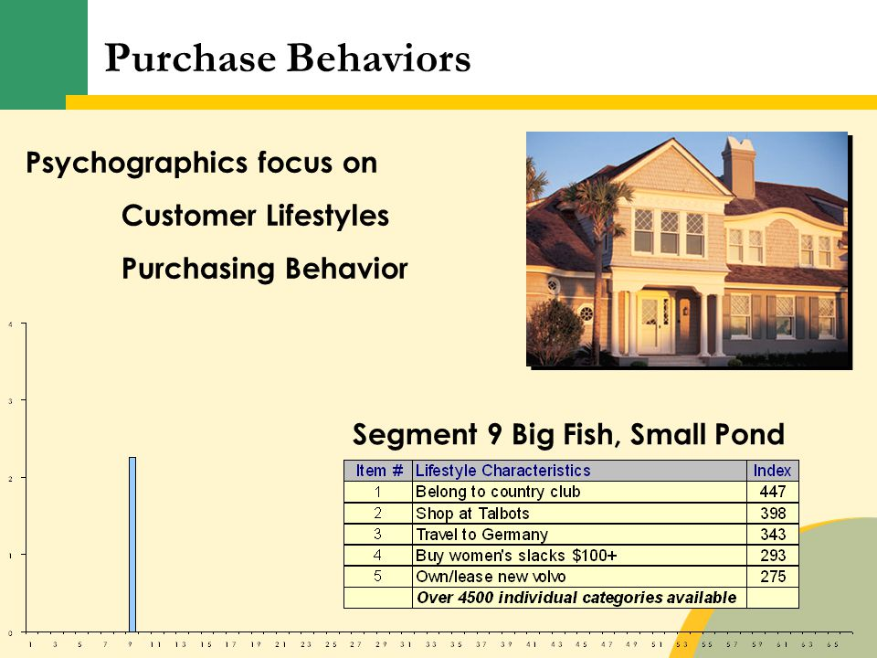 Psychographics focus on Customer Lifestyles Purchasing Behavior Segment 9 Big Fish, Small Pond Purchase Behaviors