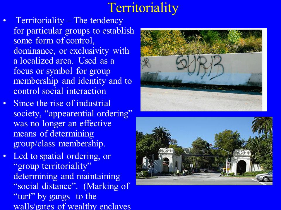 Territoriality Territoriality – The tendency for particular groups to establish some form of control, dominance, or exclusivity with a localized area.