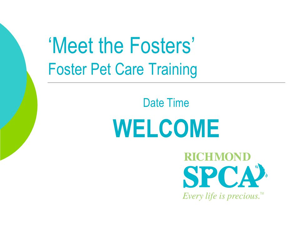 'Meet the Fosters' Foster Pet Care Training Date Time WELCOME