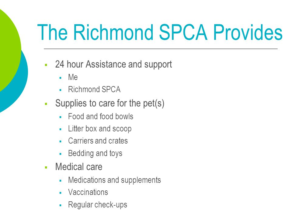 The Richmond SPCA Provides  24 hour Assistance and support  Me  Richmond SPCA  Supplies to care for the pet(s)  Food and food bowls  Litter box and scoop  Carriers and crates  Bedding and toys  Medical care  Medications and supplements  Vaccinations  Regular check-ups