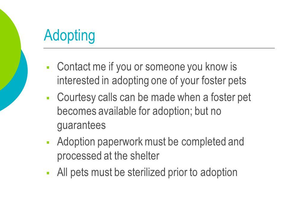 Adopting  Contact me if you or someone you know is interested in adopting one of your foster pets  Courtesy calls can be made when a foster pet beco