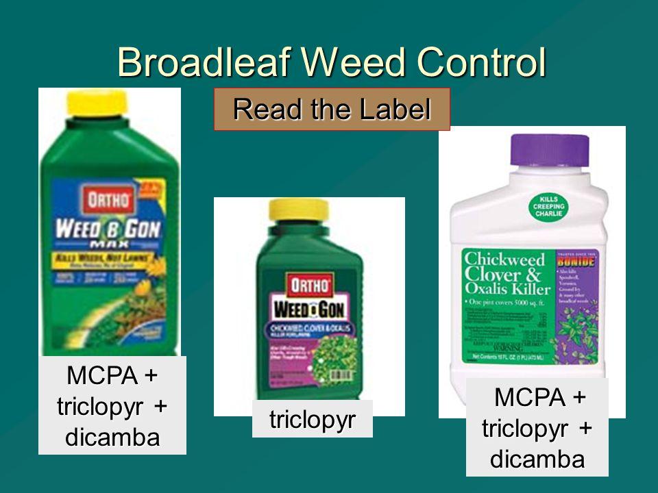 Broadleaf Weed Control triclopyr Read the Label MCPA + triclopyr + dicamba MCPA + triclopyr + dicamba MCPA + triclopyr + dicamba