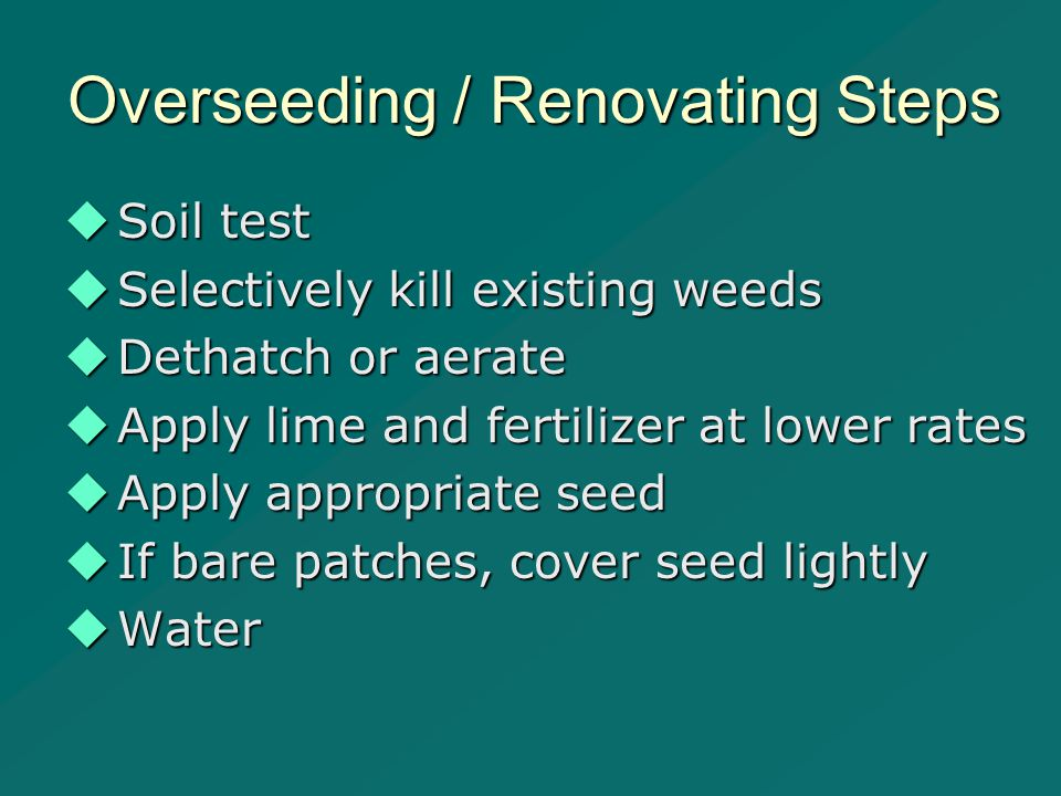 Overseeding / Renovating Steps  Soil test  Selectively kill existing weeds  Dethatch or aerate  Apply lime and fertilizer at lower rates  Apply appropriate seed  If bare patches, cover seed lightly  Water