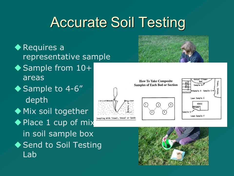 Accurate Soil Testing   Requires a representative sample   Sample from 10+ areas   Sample to 4-6 depth   Mix soil together   Place 1 cup of mix in soil sample box   Send to Soil Testing Lab