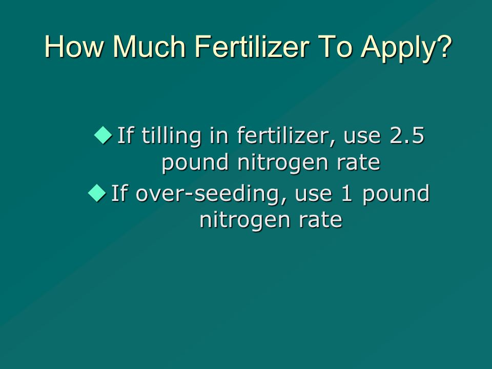 How Much Fertilizer To Apply.