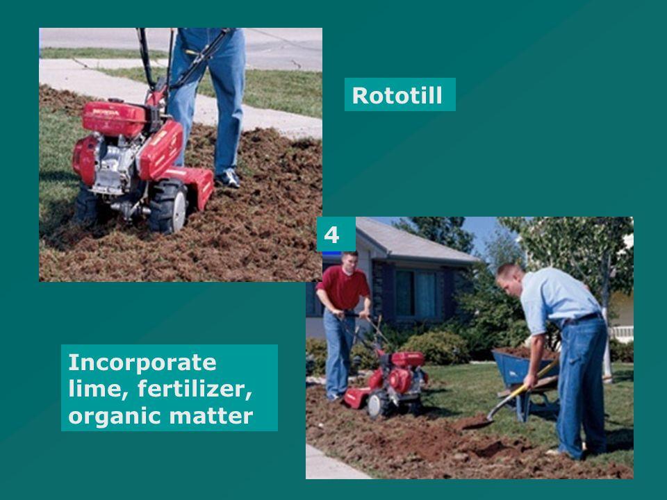 4 Rototill Incorporate lime, fertilizer, organic matter