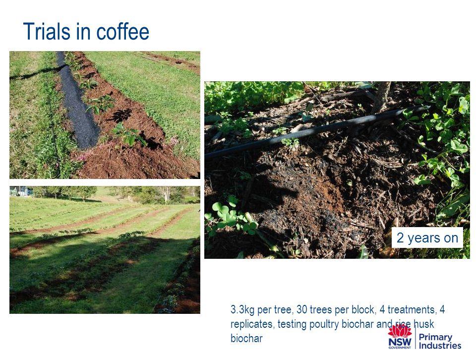 Trials in coffee 3.3kg per tree, 30 trees per block, 4 treatments, 4 replicates, testing poultry biochar and rice husk biochar 2 years on
