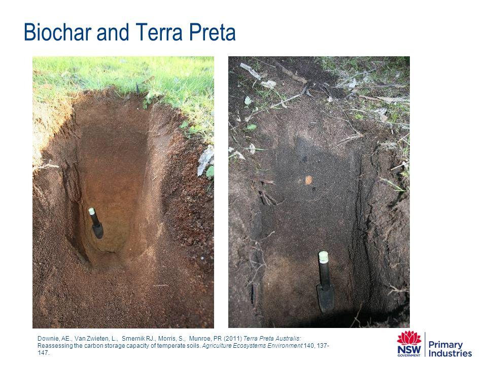 Biochar and Terra Preta Downie, AE., Van Zwieten, L., Smernik RJ., Morris, S., Munroe, PR (2011) Terra Preta Australis: Reassessing the carbon storage